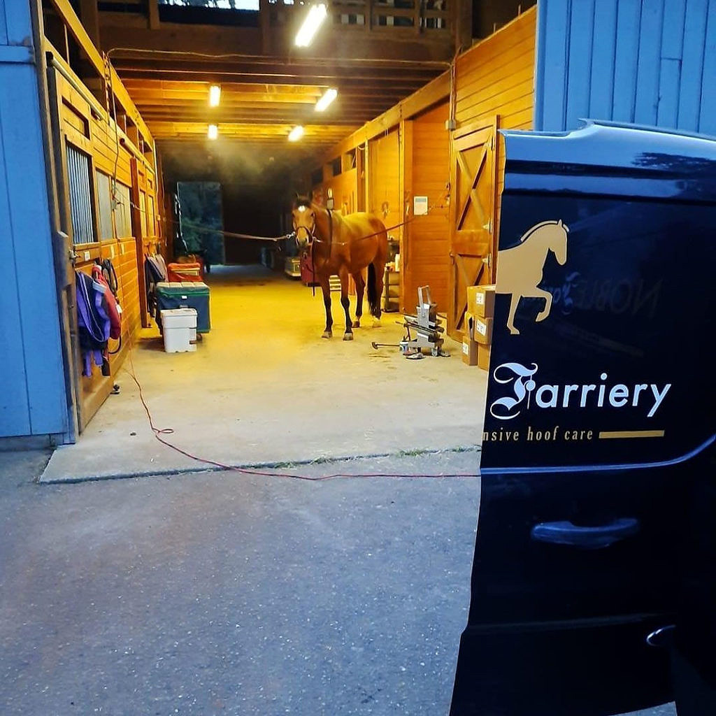 Our Culture of Farriery Safety